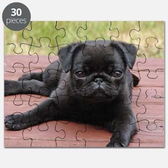 ALERT PUG PUPPY Puzzle