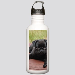ALERT PUG PUPPY Stainless Water Bottle 1.0L