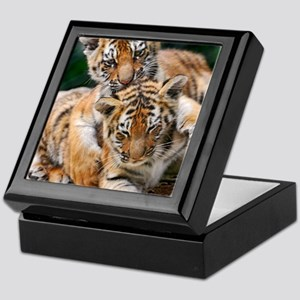 BABY TIGERS Keepsake Box
