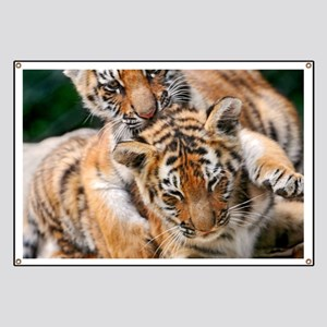 BABY TIGERS Banner