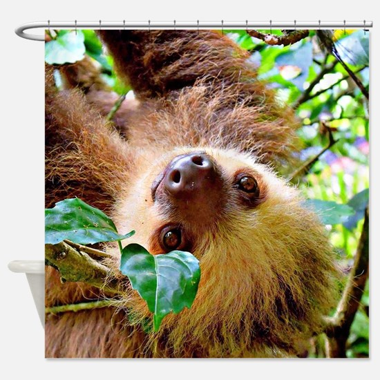 Cool Sloth Shower Curtain