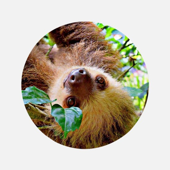 """Unique Sloth 3.5"""" Button"""
