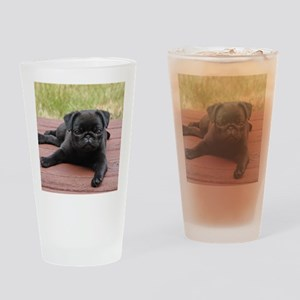 ALERT PUG PUPPY Drinking Glass