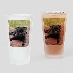 ALERT PUG PUPPY Drinking Glass