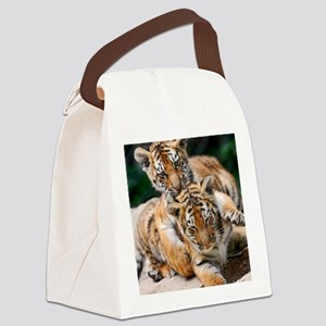 BABY TIGERS Canvas Lunch Bag