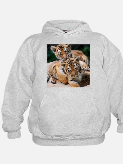 BABY TIGERS Hoodie