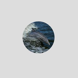 Dolphin20151020 Mini Button