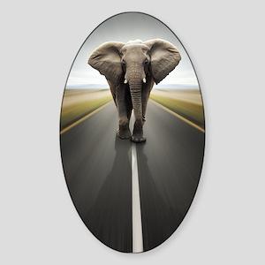 Elephant Trucker Sticker (Oval)