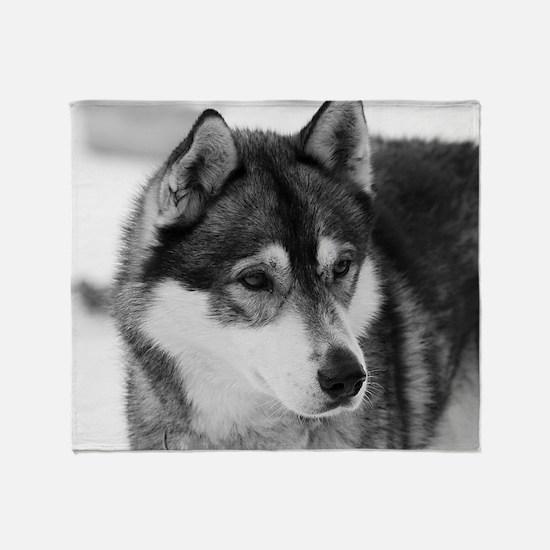 Funny Huskies Throw Blanket