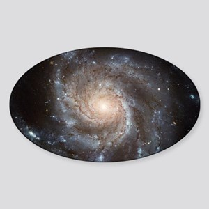 Spiral Galaxy (M101) Sticker (Oval)