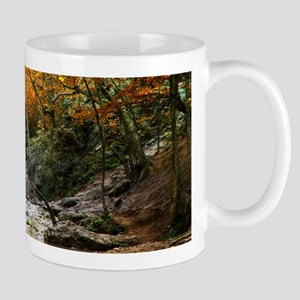 Autumn Forest Waterfall Mug