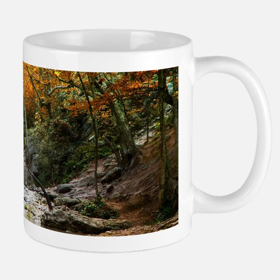 Autumn Forest Waterfall Mug
