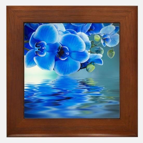 Blue Orchids Framed Tile