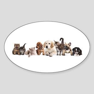 Cute Pet Panorama Sticker (Oval)