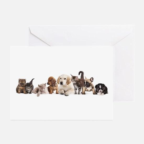 Cute Pet Panorama Greeting Cards (Pk of 10)