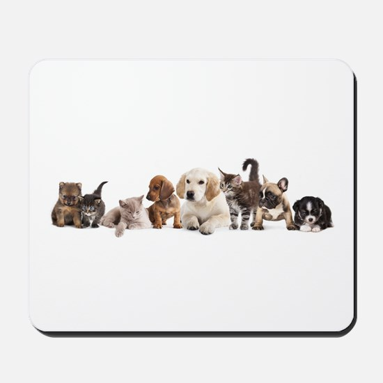 Cute Pet Panorama Mousepad