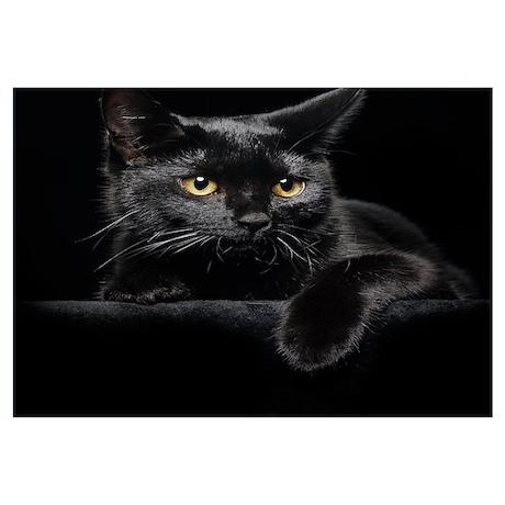 Black Cat Wall Art