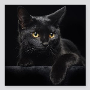 "Black Cat Square Car Magnet 3"" x 3"""
