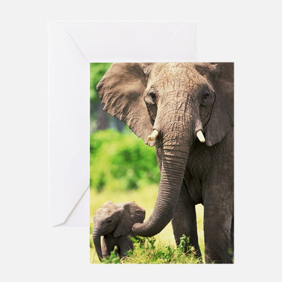 Mother Love Greeting Cards