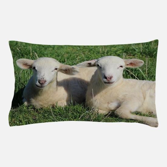 Unique Lambs Pillow Case