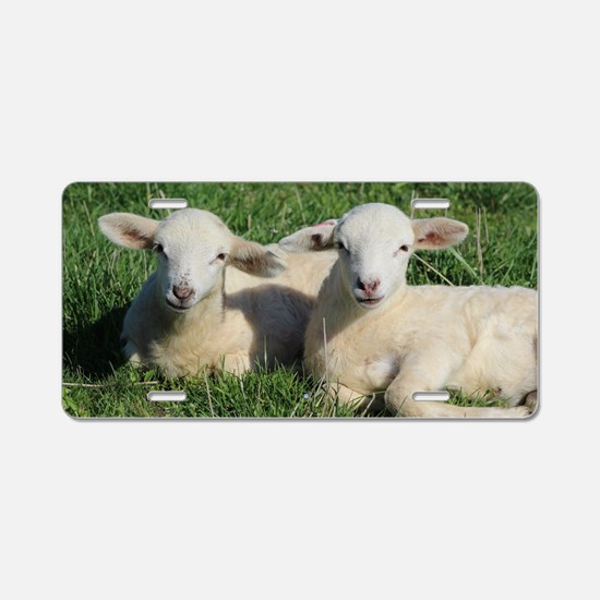 Funny Lambs Aluminum License Plate