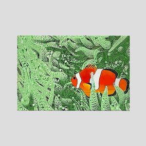 Clownfish Magnets