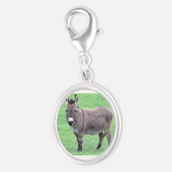 Merlin the Mini Donk Charms