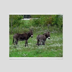 Two Miniature Donkeys Throw Blanket