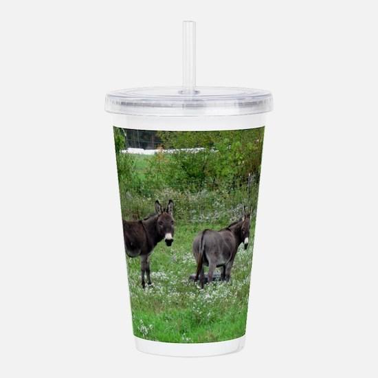 Two Miniature Donkeys Acrylic Double-wall Tumbler