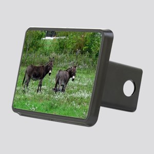 Two Miniature Donkeys Rectangular Hitch Cover