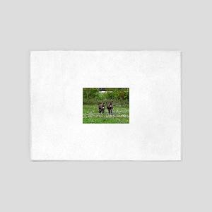 Two Miniature Donkeys (2) 5'x7'Area Rug