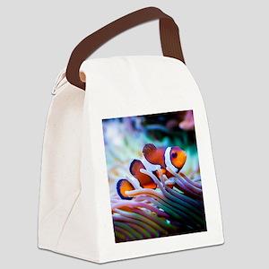 ClownFish20151006 Canvas Lunch Bag