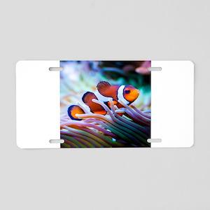 ClownFish20151006 Aluminum License Plate