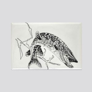 Northern-Pike Magnets