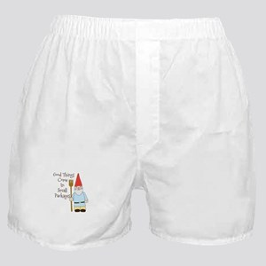 Small Packages Boxer Shorts