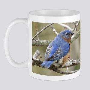Bluebirds Mugs