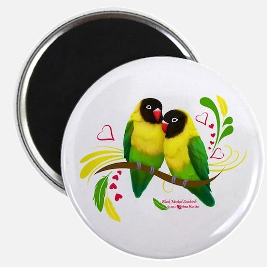 Black Masked Lovebirds Magnets