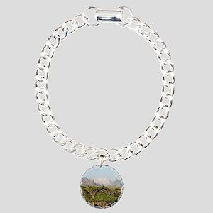 SOCOTRA, YEMEN Charm Bracelet, One Charm