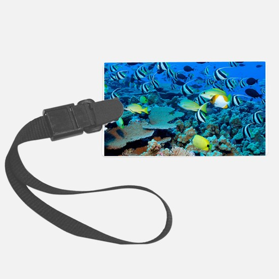 FR FRIGATE SHOALS Luggage Tag