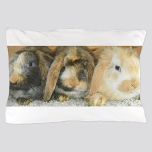 Harlequin Mini Lop Trio Pillow Case