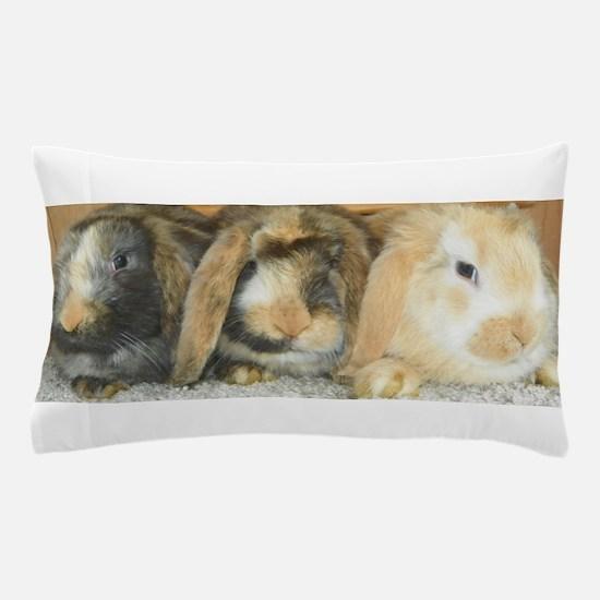 Harlequin Mini Lop Trio Pillow Case