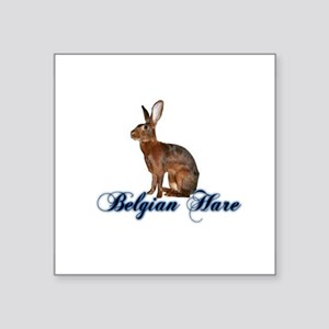 Belgian Hare Sticker