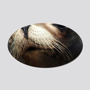 CUTE SEA LION 20x12 Oval Wall Decal