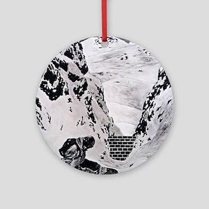 Snowboarding Round Ornament