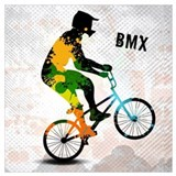 Bmx Framed Prints