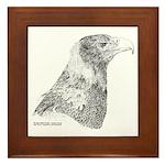 Wedge Tailed Eagle Fine Framed Tile
