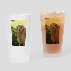 golden retriever n Drinking Glass