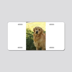 golden retriever n Aluminum License Plate