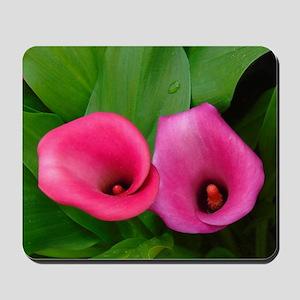 Pink Calla Lilies Mousepad