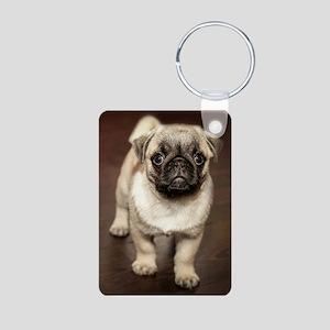 Curious Pug Puppy Keychains